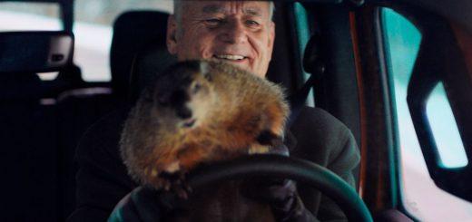 Bill Murray et sa marmotte
