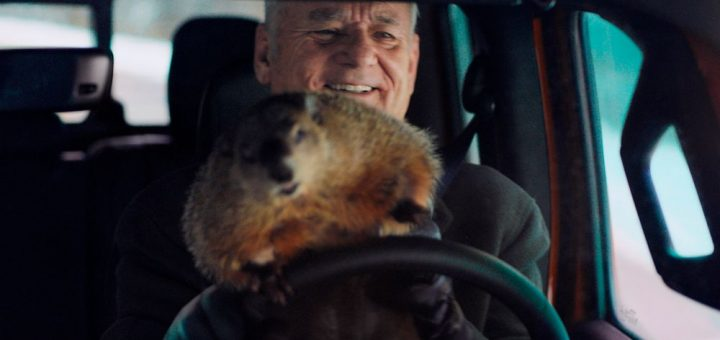 Bill Murray et sa marmotte