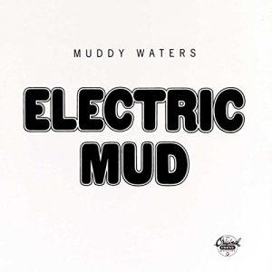 «Electric Mud»