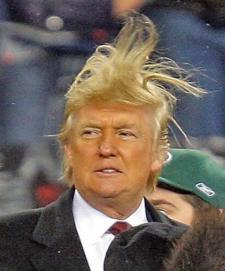 Trump rock