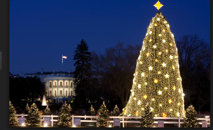 Xmas White House