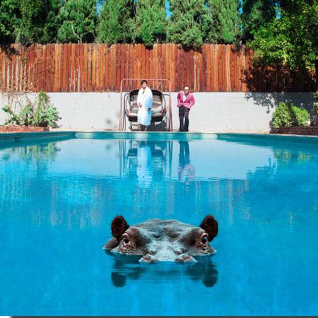 hippo-LP